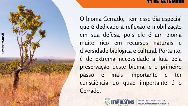 11 DE SETEMBRO DIA DO CERRADO